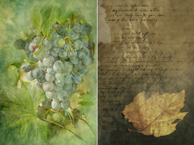 Painted Grapes and Leaf Collage by Sue Bloom