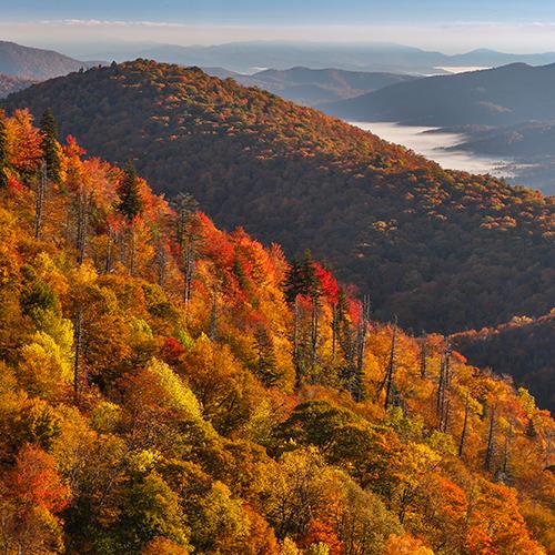 Blue Ridge Mountain Vista Fall