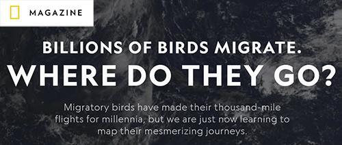 NatGeo_interactive_migration_maps