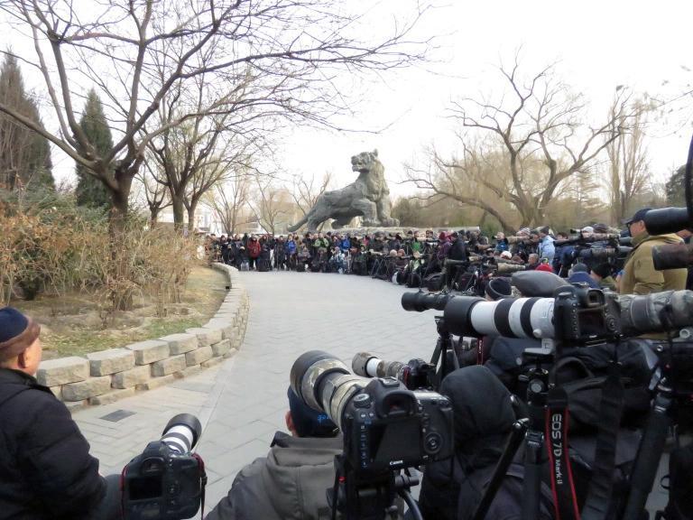 beijing_photographers