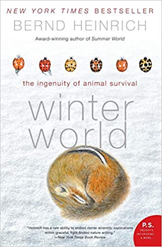 winter_world_heinrich