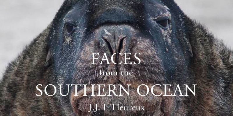 Faces from the Southern Ocean