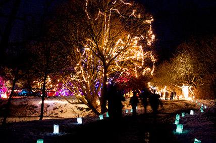 Ballard Park Illuminate