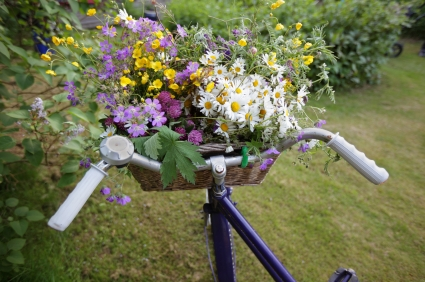 Bicycle and Flower Basket