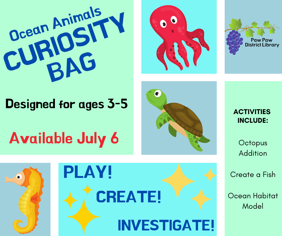 July curiosity bag for ages 3-5. Theme is ocean animals.
