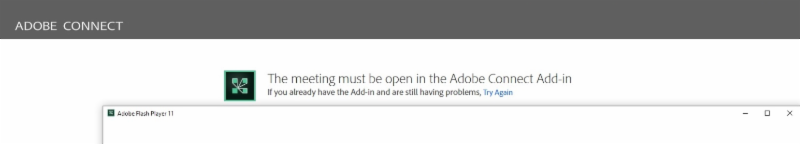 Adobe Connect Error