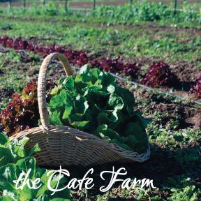 cafe farm