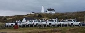 10 white trucks
