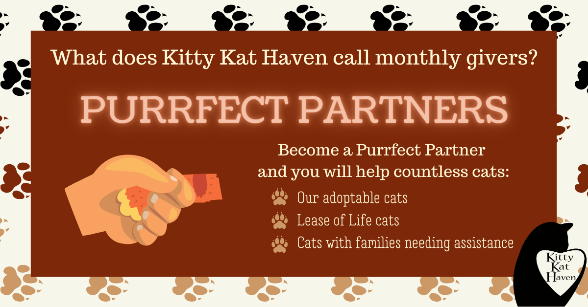 Become a Purrfect Partner.png