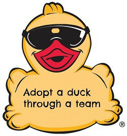 15th Annual Duck Derby: Adopt a Duck to Benefit G'ville Non-Profits